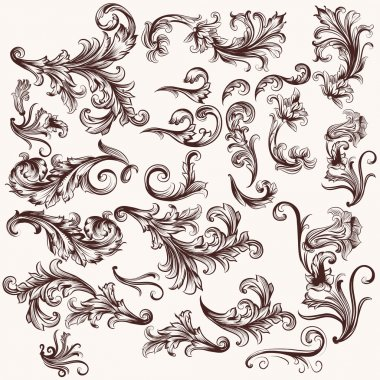 Vector set of floral swirls in vintage style