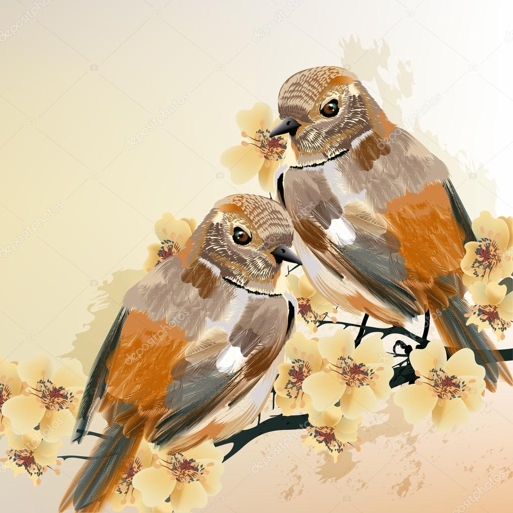 Couple of birds sit on a blooming branch tree