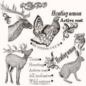 Kézzel rajzolt állatok vadászati de vintage stílusban gyűjteménye