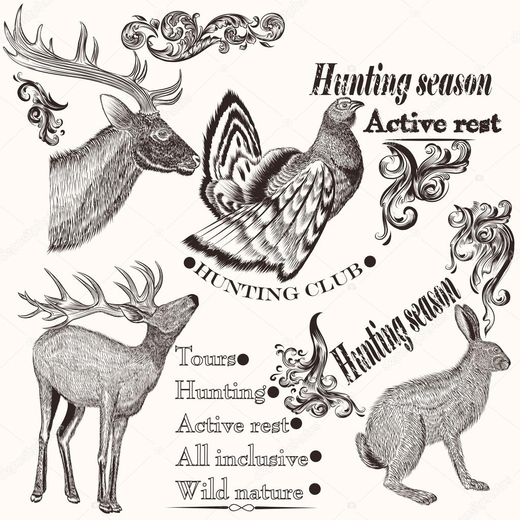 Collection of hand drawn animals in vintage style for hunting de