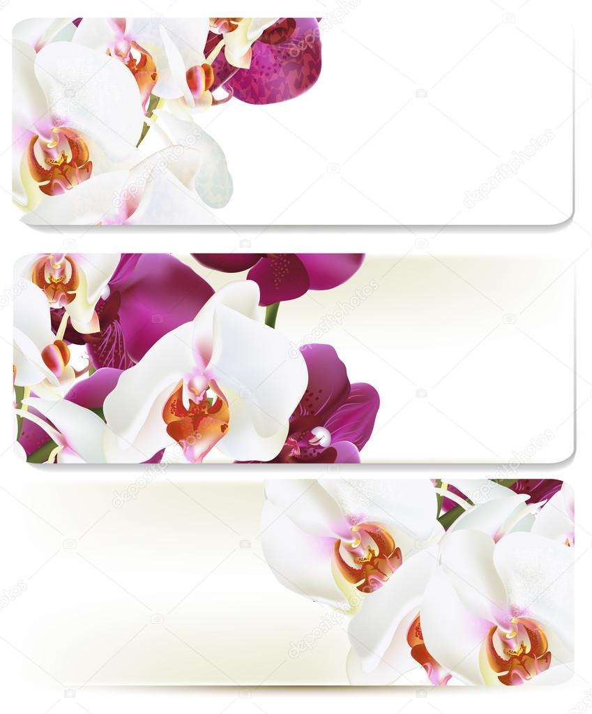 Floral backgrounds set with orchids