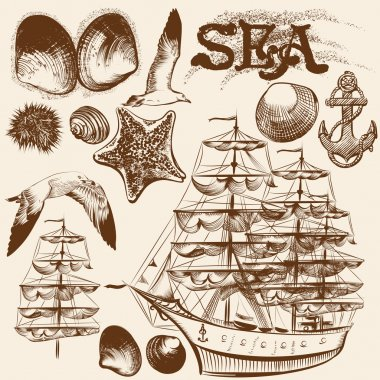 Collection of hand drawn vintage elements on sea theme