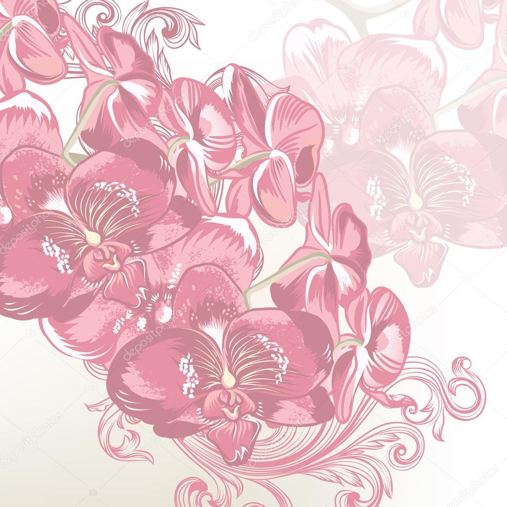 Floral vector background with orchids