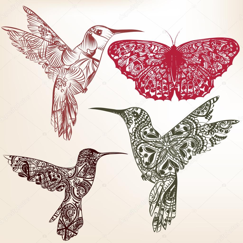 Collection of vector  hummingbirds from ornament