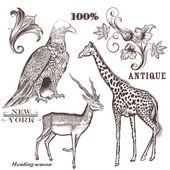 kolekce vektoru ručně tažené zvířaty