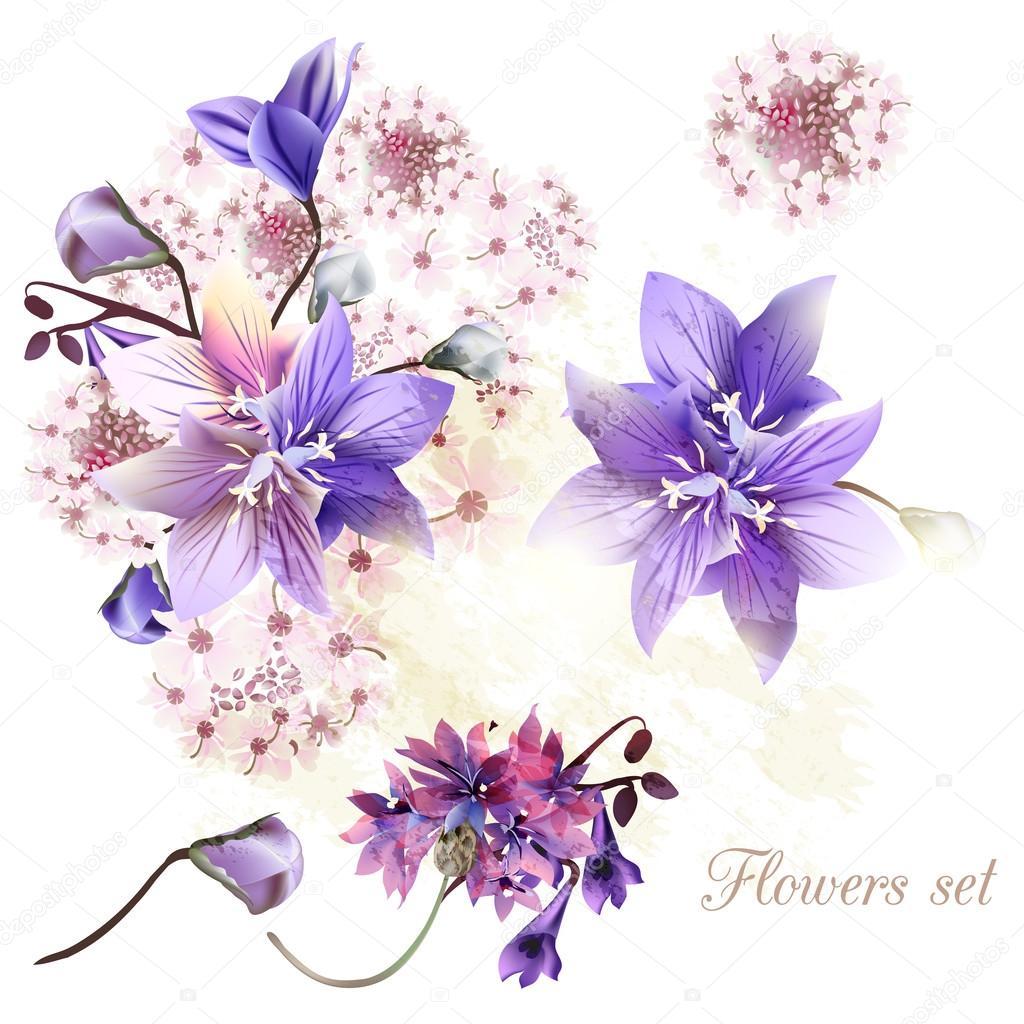 Нежные цветы акварель картинки