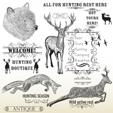 Vector set of engraved hand drawn animals deer, bear, fox and ca