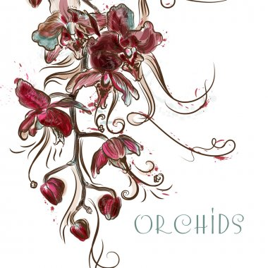Vector illustration with engraved orchid flowers
