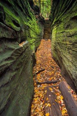 Narrow Crevice