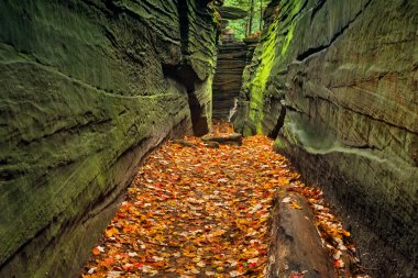 A narrow rock crevice with green walls and a floor covered with autumn leaves in Ohio's Cuyahoga Valley National Park. stock vector