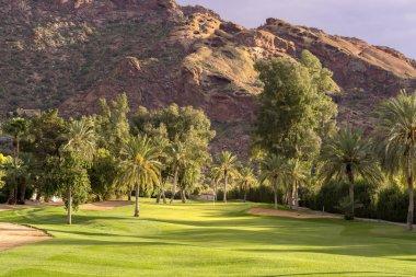 Desert golf course, Phoenix,Az,USA