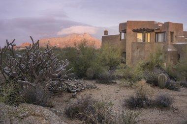 New home in Desert