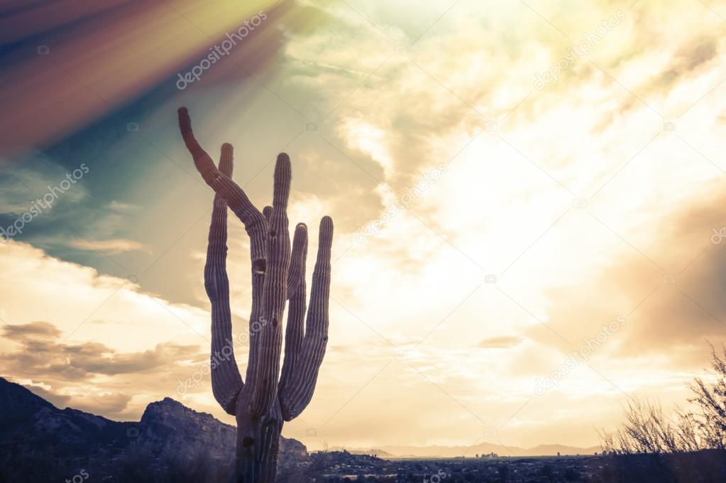 Camelback Mountain, valley canyon resort destination area, Phoenix,AZ,USA
