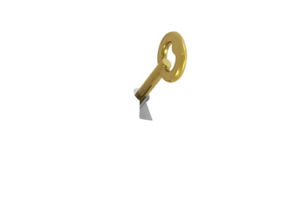 Concetto di login con puzzle e la chiave
