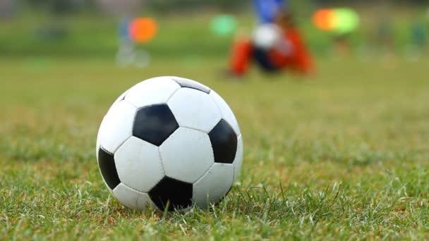 fotbalový míček na trávě