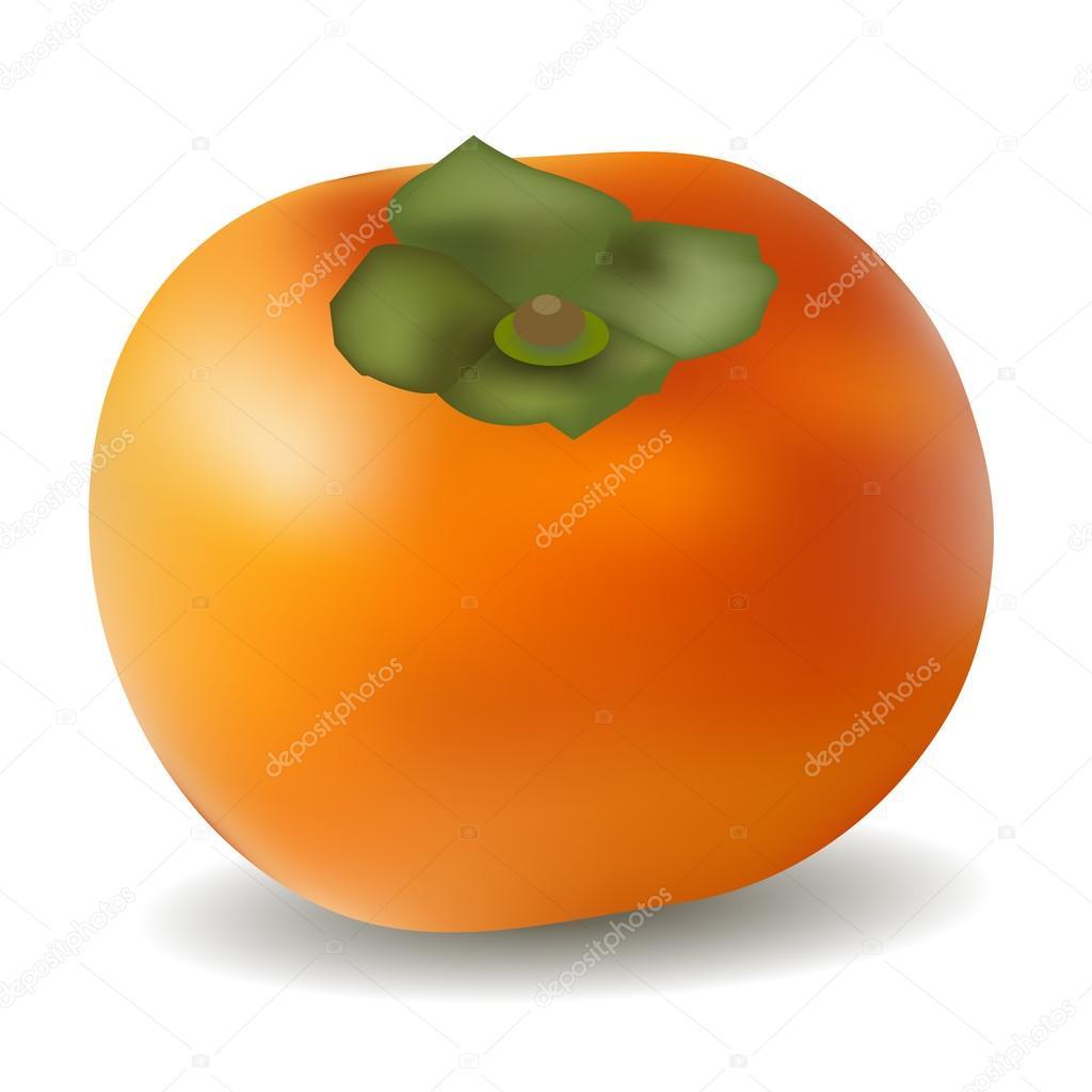 Persimmon fruit autumn icon