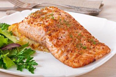 Baked salmon with honey-mustard sauce and potato gratin stock vector