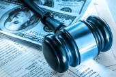 rozpočet, daňové formuláře, kladívko a dolary