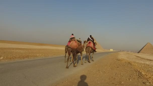 Local people riding camels