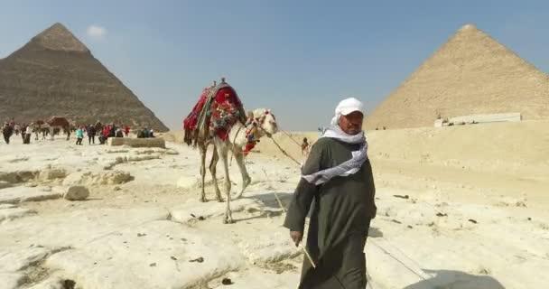 Egyptský muž přední velbloud