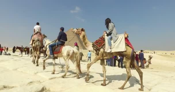 turisté na velbloudy na pyramidový komplex Gíza