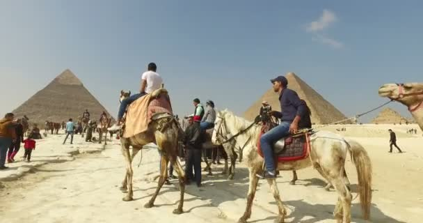 Group of tourist on horses and camels at Giza pyramid complex