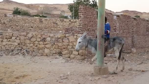 local boy riding a donkey