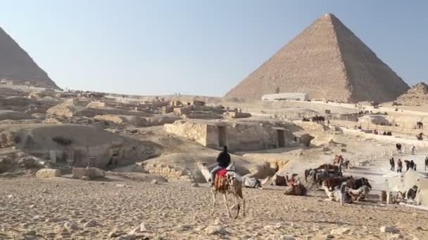 Muž na koni velbloud v poušti