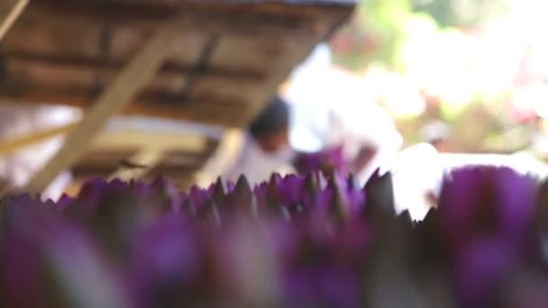 Purple květiny a včely