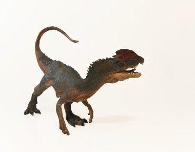 """Картина, постер, плакат, фотообои """"завершение украшенного гребнем dilophosaurus динозавра"""", артикул 63333527"""