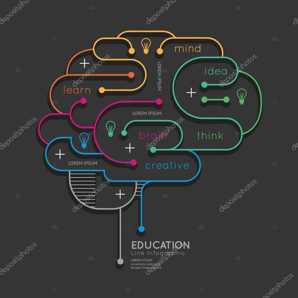 Infographic Education Outline Brain Concept.