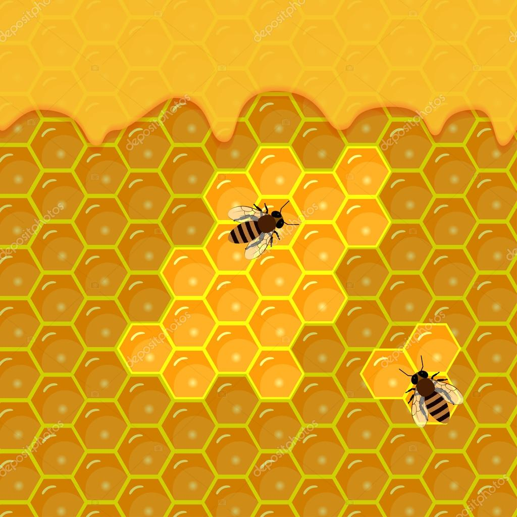 honeycomb and sweet honey drips.