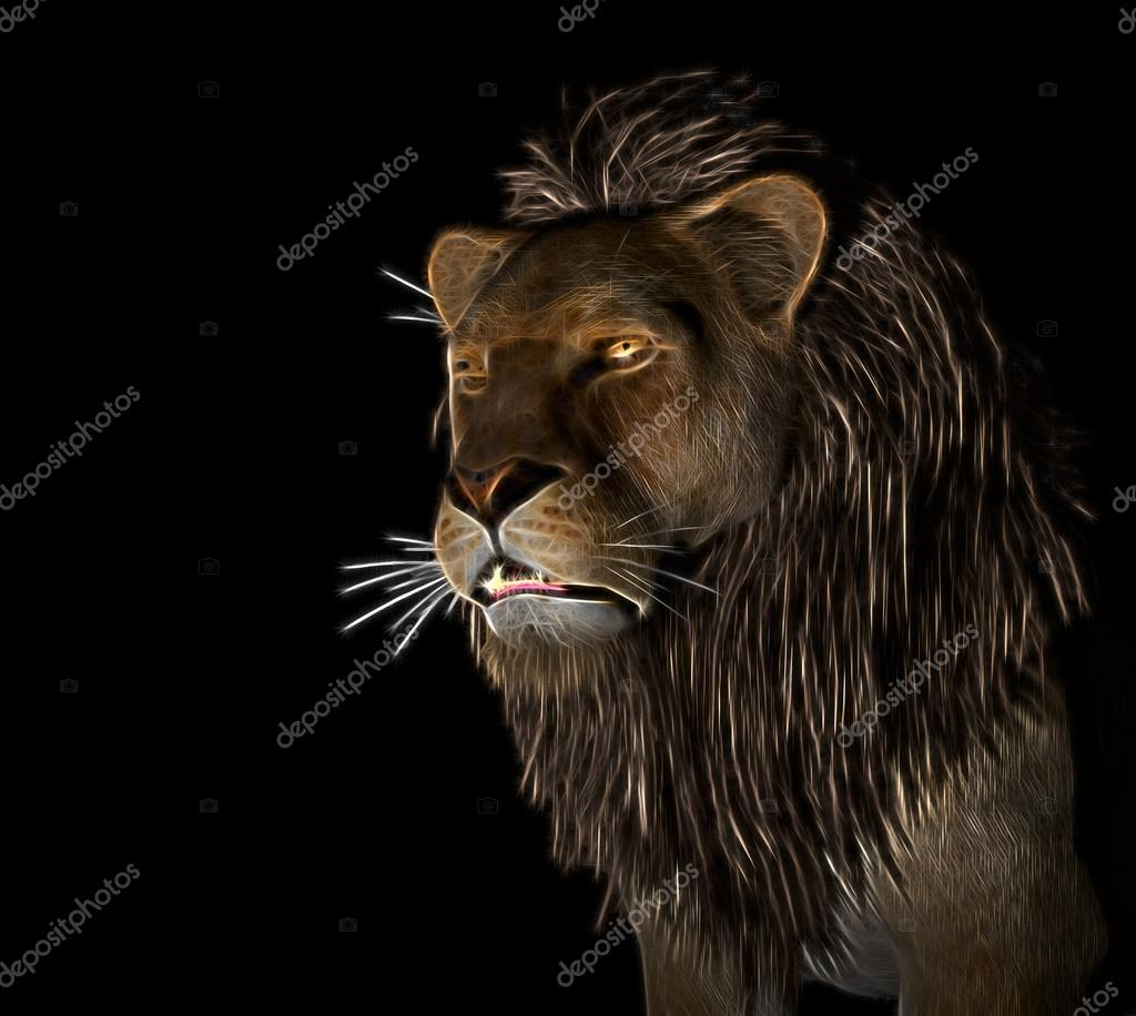 Leone arrabbiato a fondo nero foto stock ankarb 92088476 for Sfondi leone