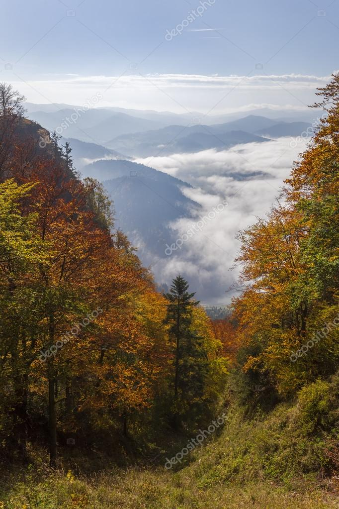 Pieniny Mountains - view from the top