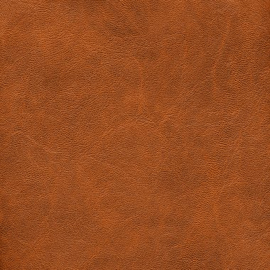 Rlight brown leather texture