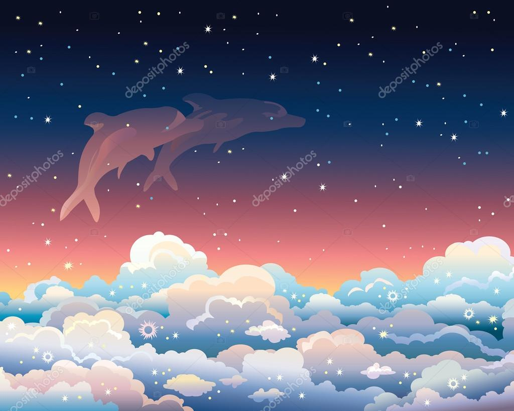 Night sky and dolphins