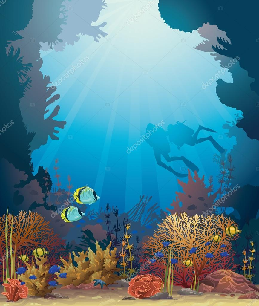 Coral reef and scuba divers.