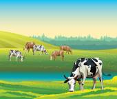 Summer landscape with cows and meadow.