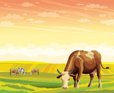 Cow and green meadow. Rural landscape.