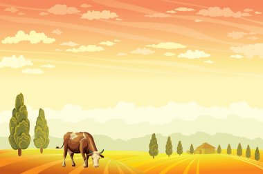 Domestic cow grazing on the field wih the sunset cloudy sky background. Vector of rural summer landscape. stock vector