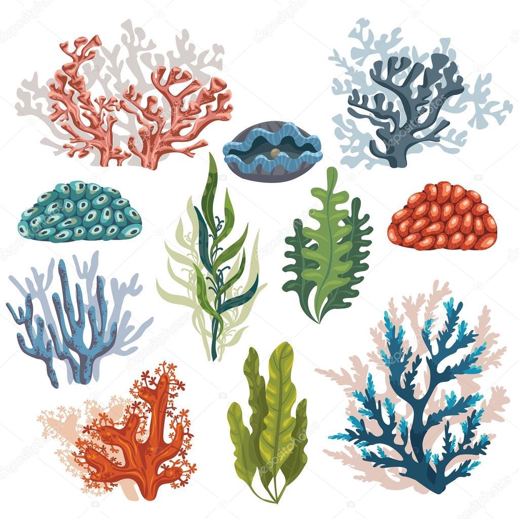 Set of cartoon corals.