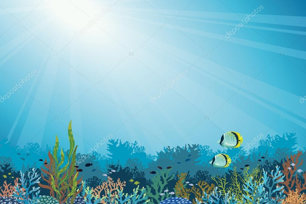 Coral reef with fish. Underwater sea.