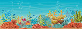 Underwater coral reef and fish.