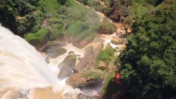 Letecký pohled shora dolů na masivní vodopád kaskády v divokém deštném pralese.