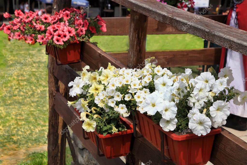 Flores Decoradas Terraza De Una Casa Foto De Stock
