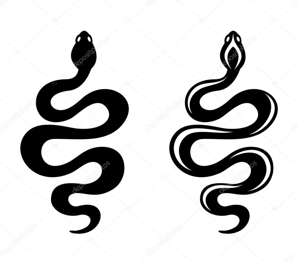 snake #hashtag