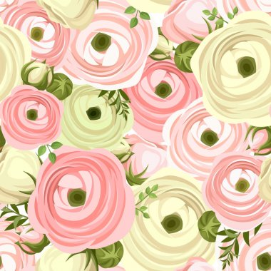 Seamless pattern with pink and white ranunculus flowers. Vector illustration.