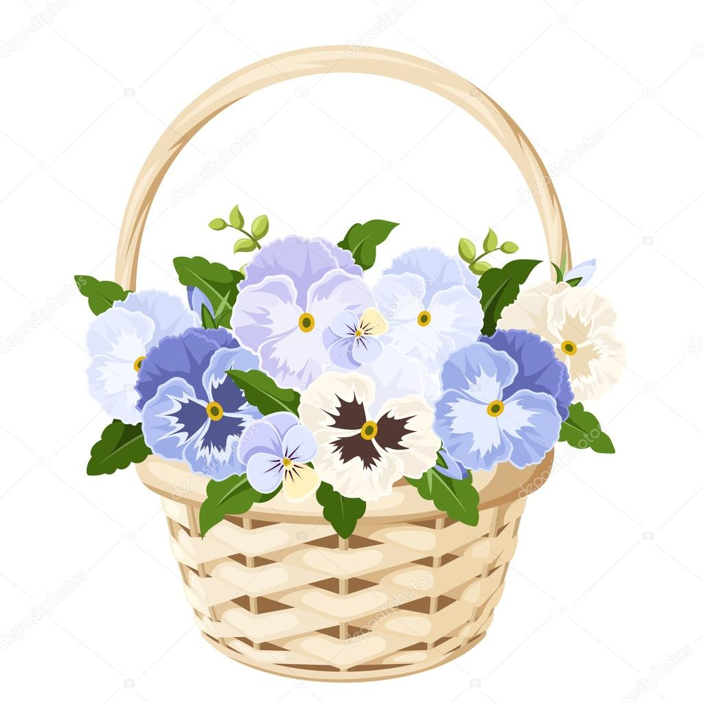 Basket with blue and white pansy flowers. Vector illustration.