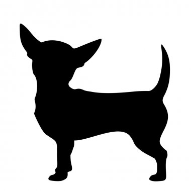 Chihuahua dog. Vector black silhouette.