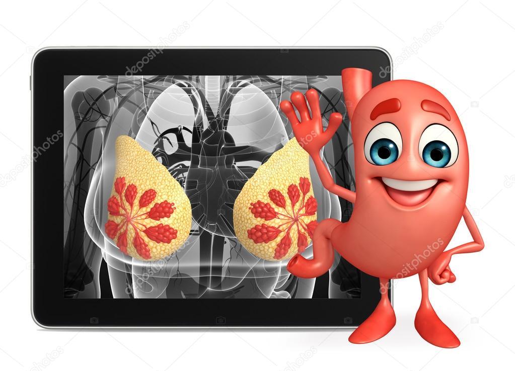 Personaje de dibujos animados del estómago con la anatomía de la ...